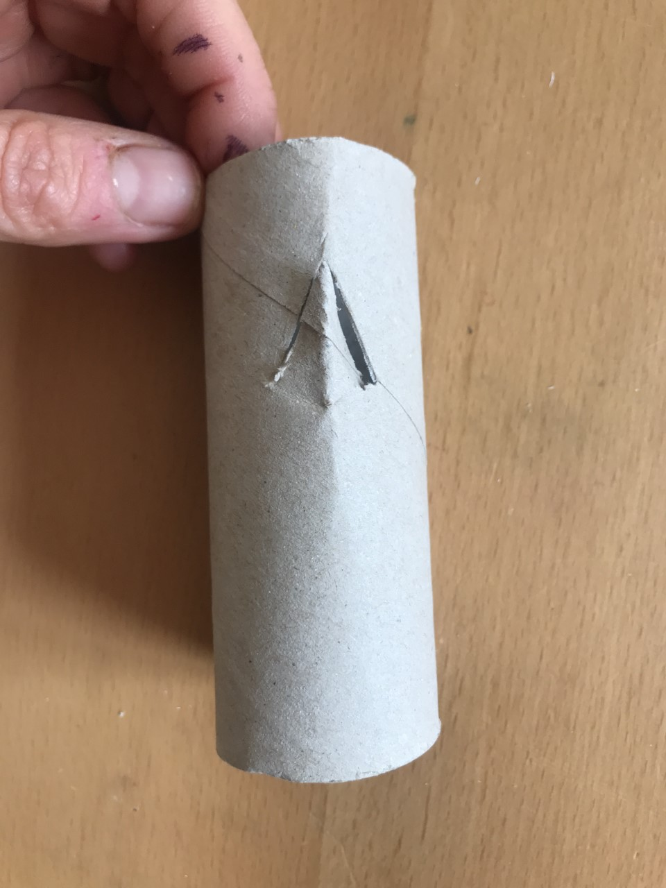 Someone holds a loo roll tube with a triangular cut in it. The point of the triangular cut is near the top of the tube.