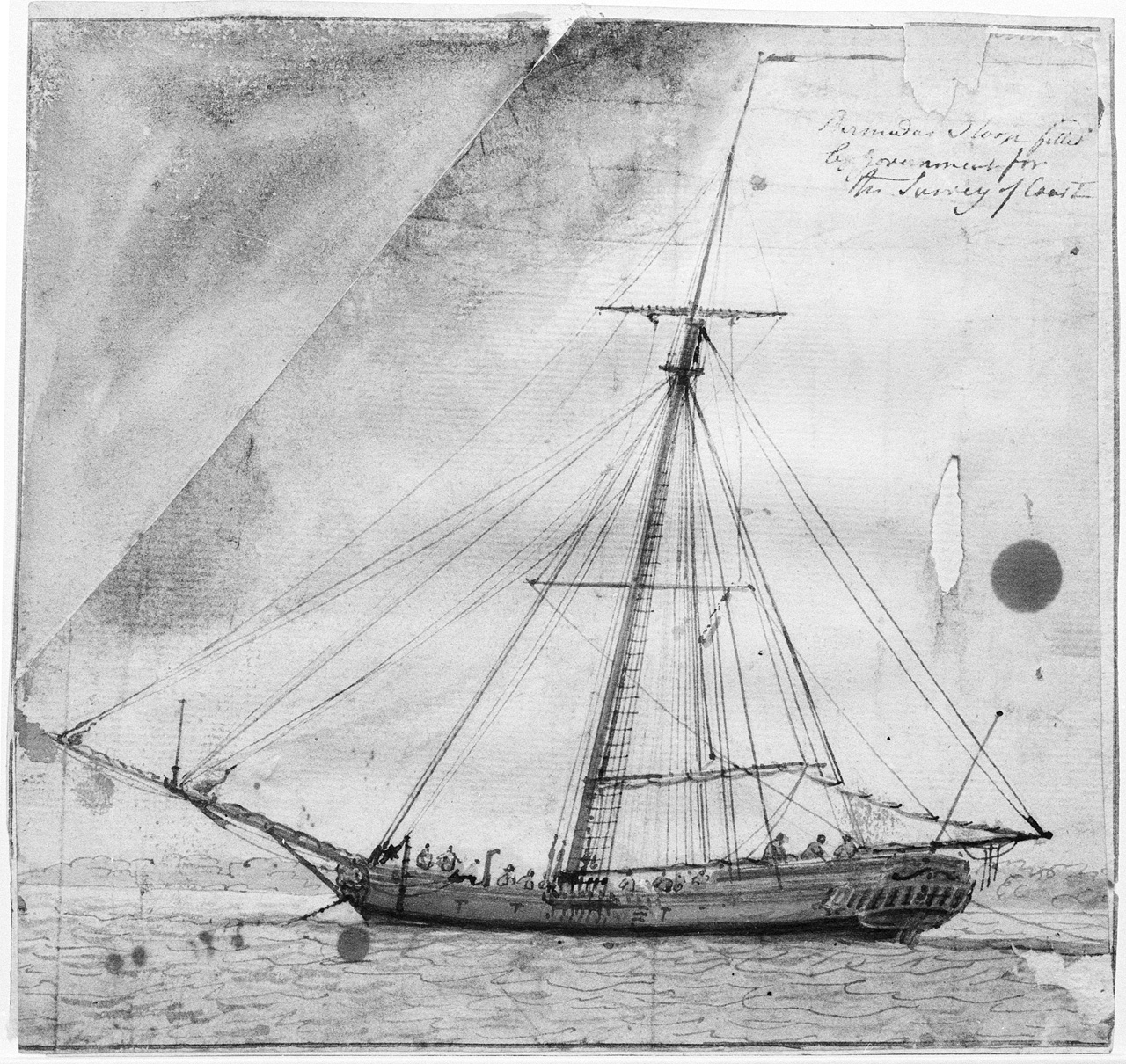 'Bermuda sloop fitted by Government for the survey of coast'