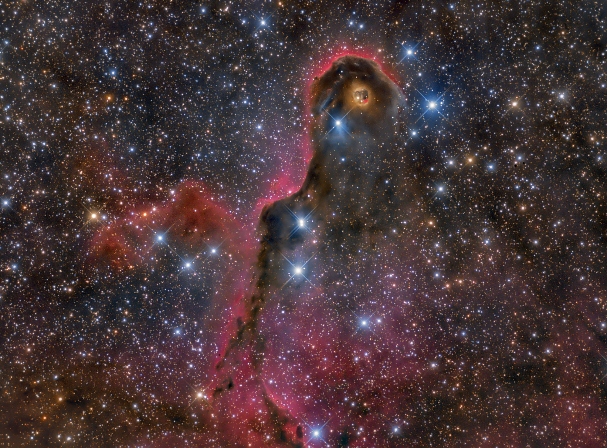 Highly Commended: The Elegant Elephant's Trunk by Lluís Romero Ventura | Insight Investment Astronomy Photographer of the Year 2019 | Stars and Nebulae