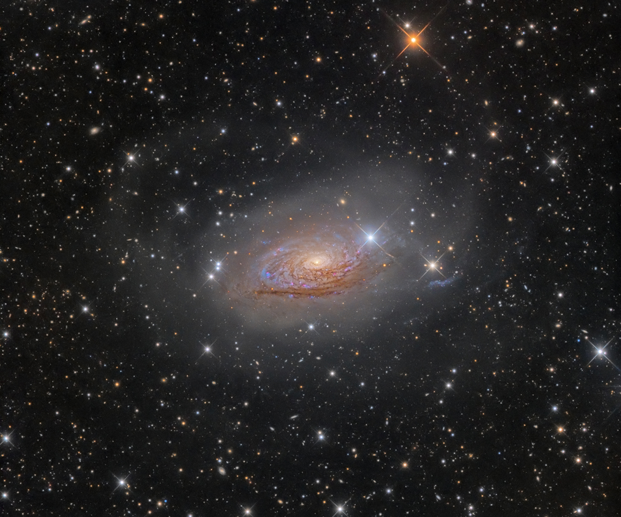 M63 Star Streams and the Sunflower Galaxy © Oleg Bryzgalov