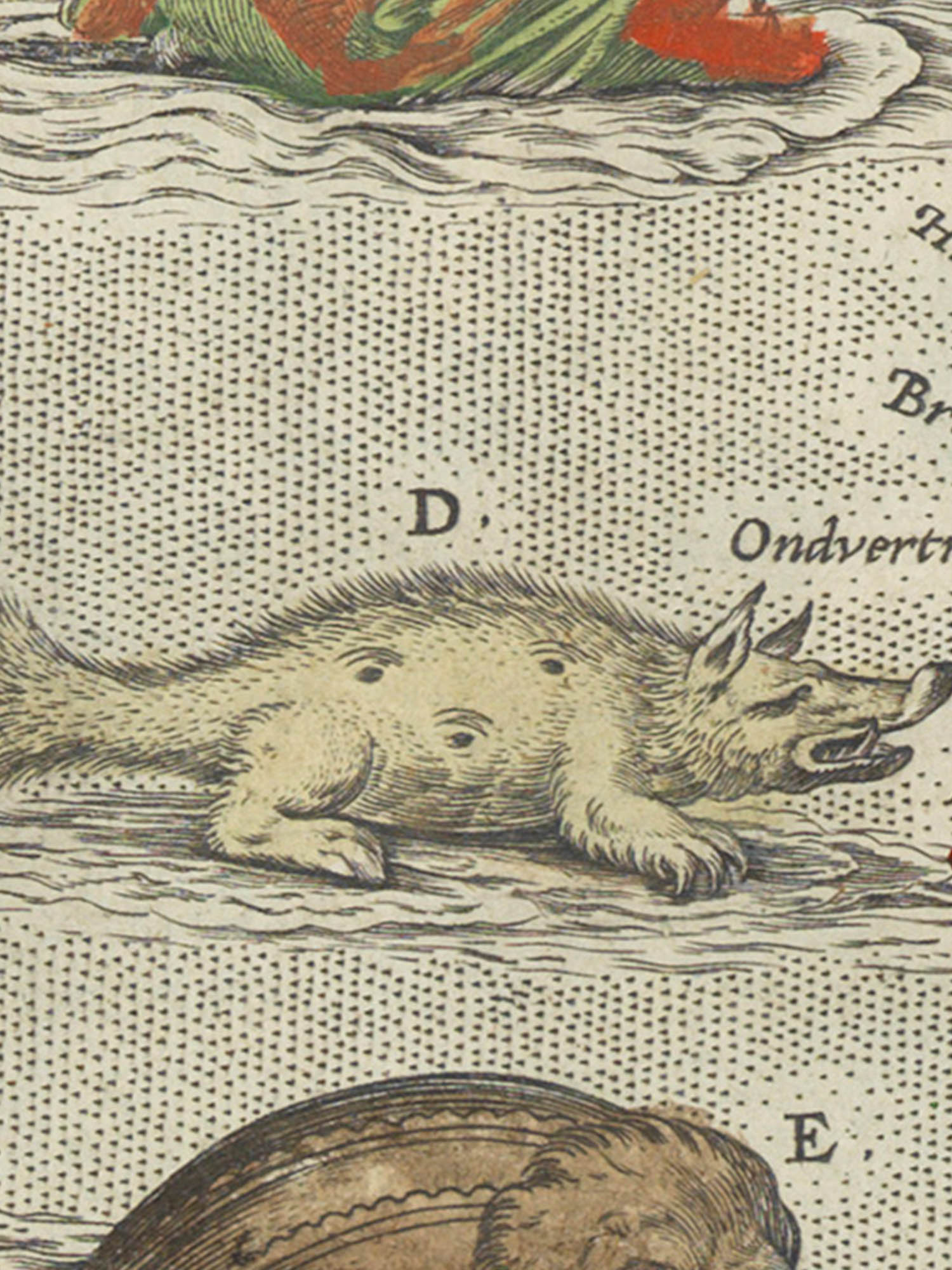 """Image of sea monster D from the Islandia map. """"Hyena"""""""