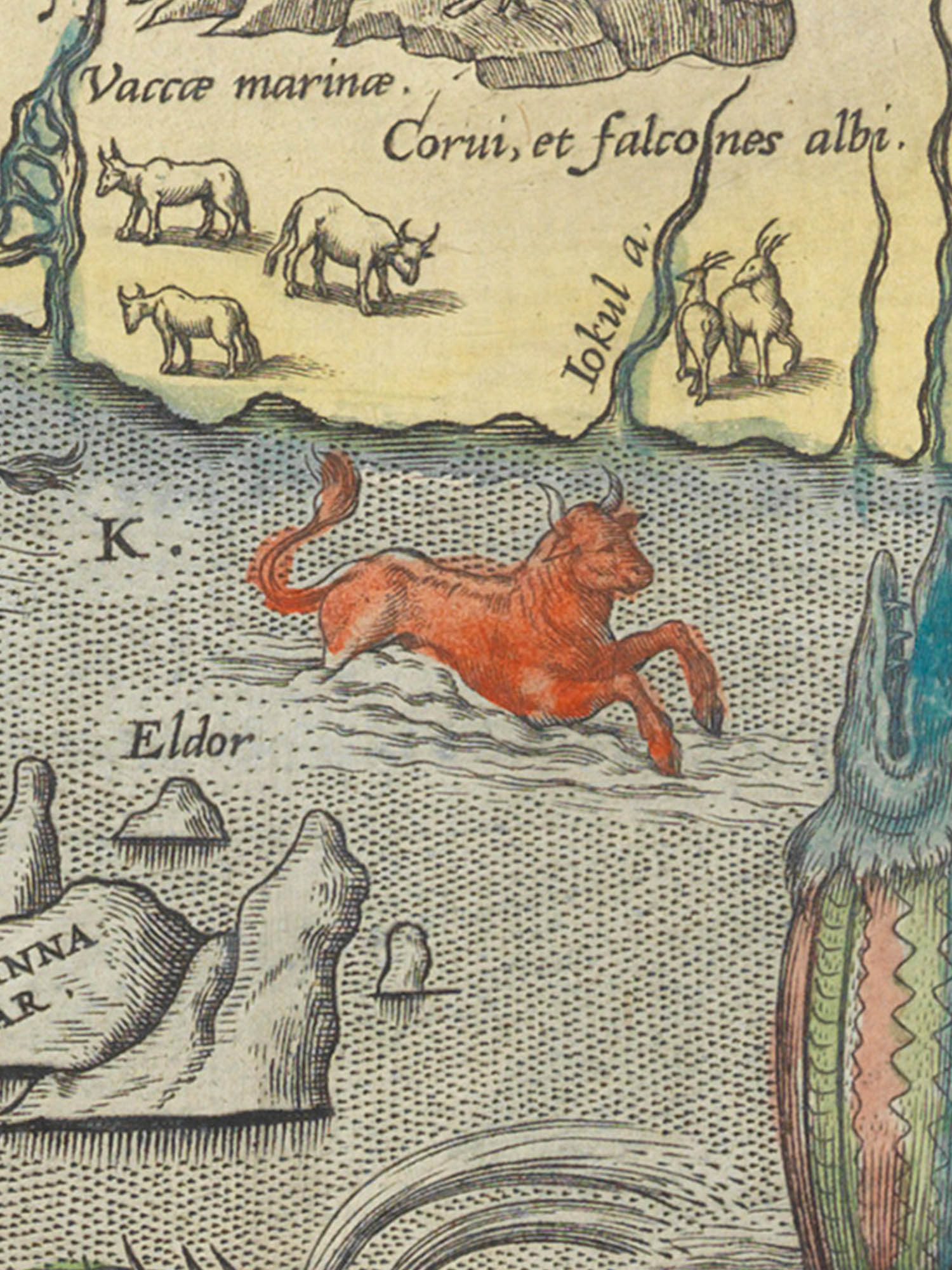 "Image of sea monster K from the Islandia map. ""Seenaut"""