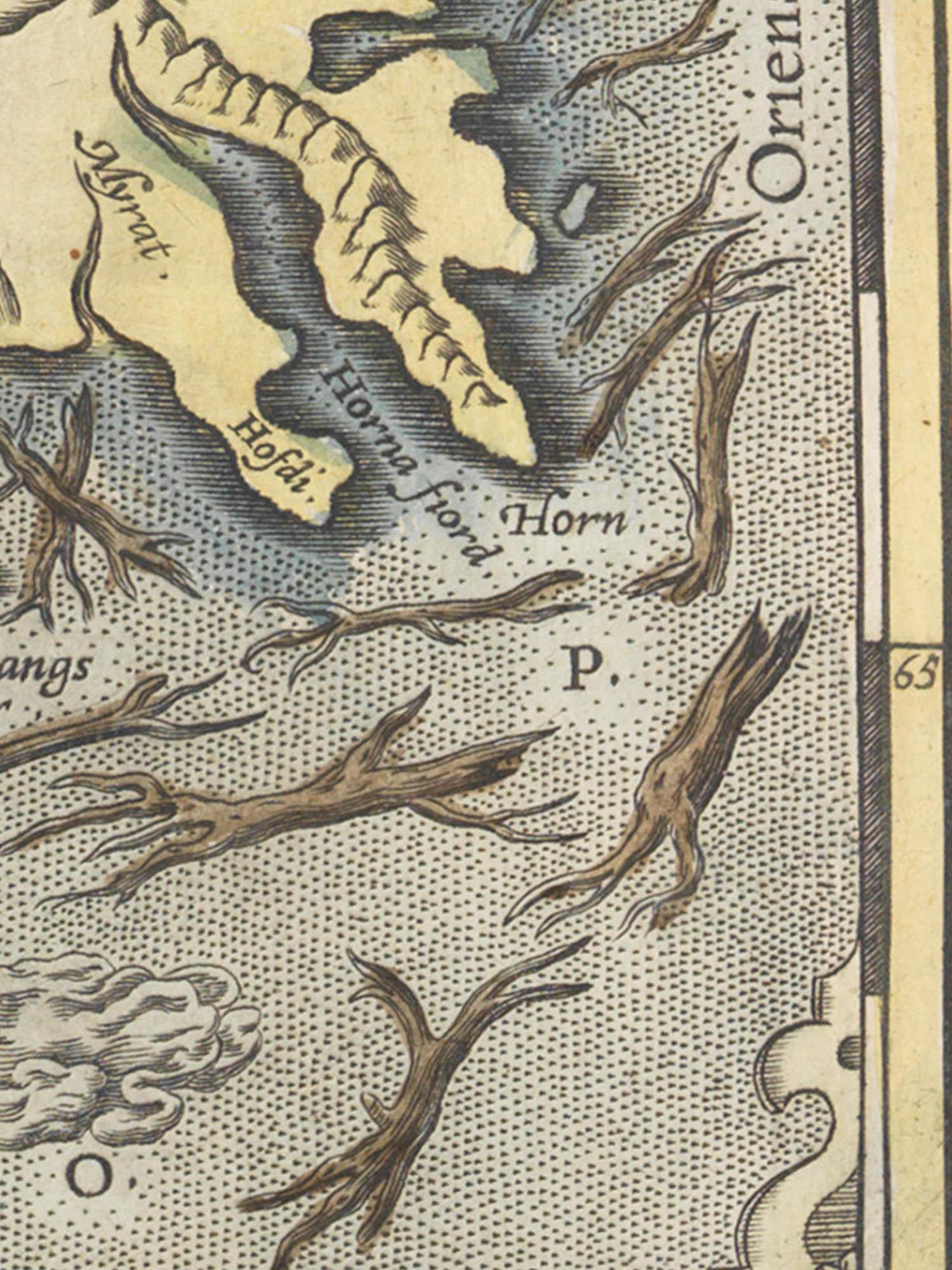 Image of tree trunks in Islandia map