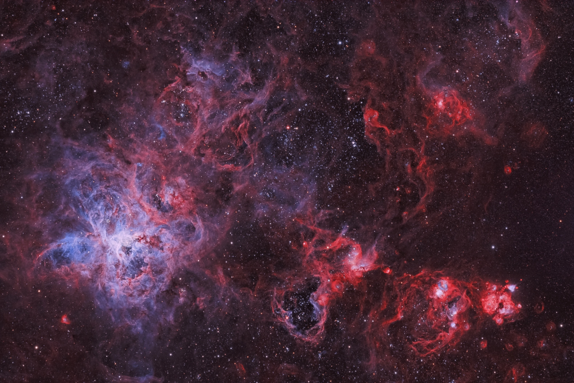 NGC 2070 - The Tarantula Nebula by Thomas Klemmer | Insight Investment Astronomy Photographer of the Year 2019 | Stars and Nebulae
