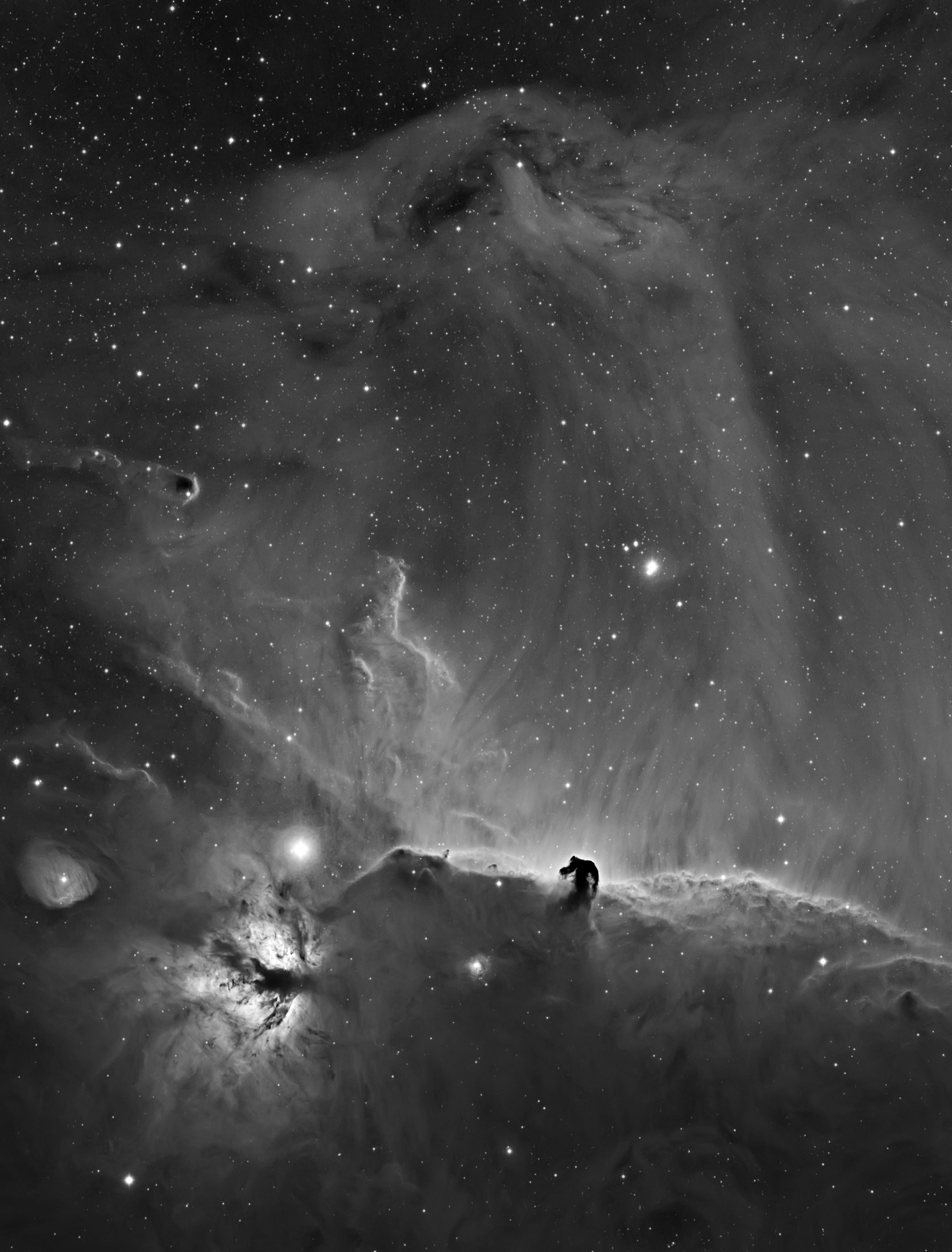 A Horsehead Curtain Call by Bob Franke | Insight Investment Astronomy Photographer of the Year 2019 | Stars and Nebulae