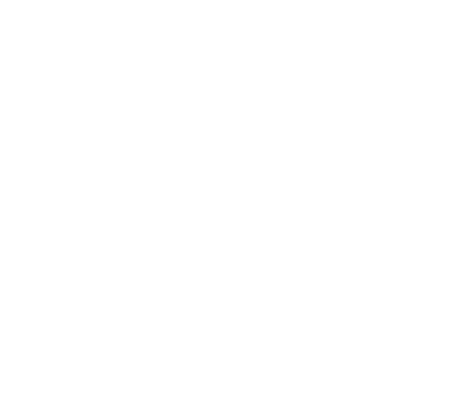 Insight Investment Astronomy Photographer of the Year logo 2019