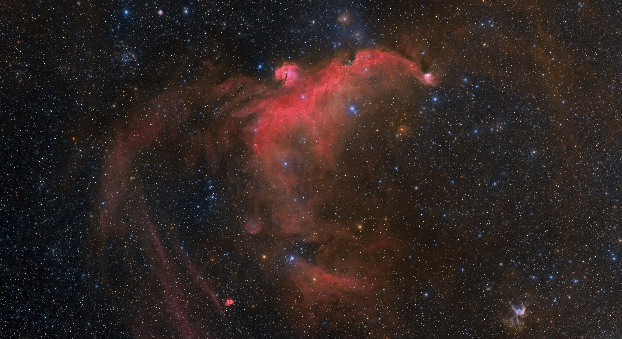 The Stellar Gull by Raul Villaverde Fraile   Insight Investment Astronomy Photographer of the Year 2019   Stars and Nebulae