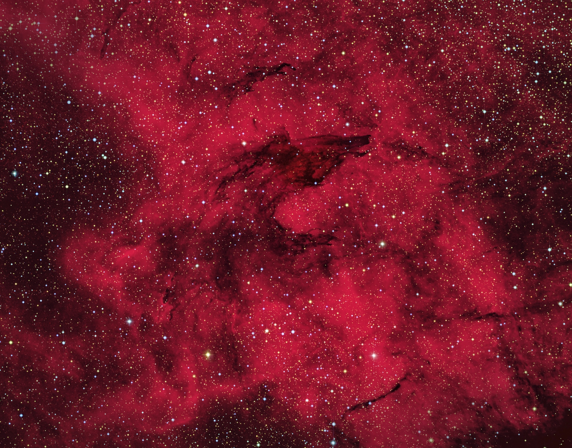 The Wolf Nebula SL-17 by Andrew Campbell   Insight Investment Astronomy Photographer of the Year 2019   Stars and Nebulae
