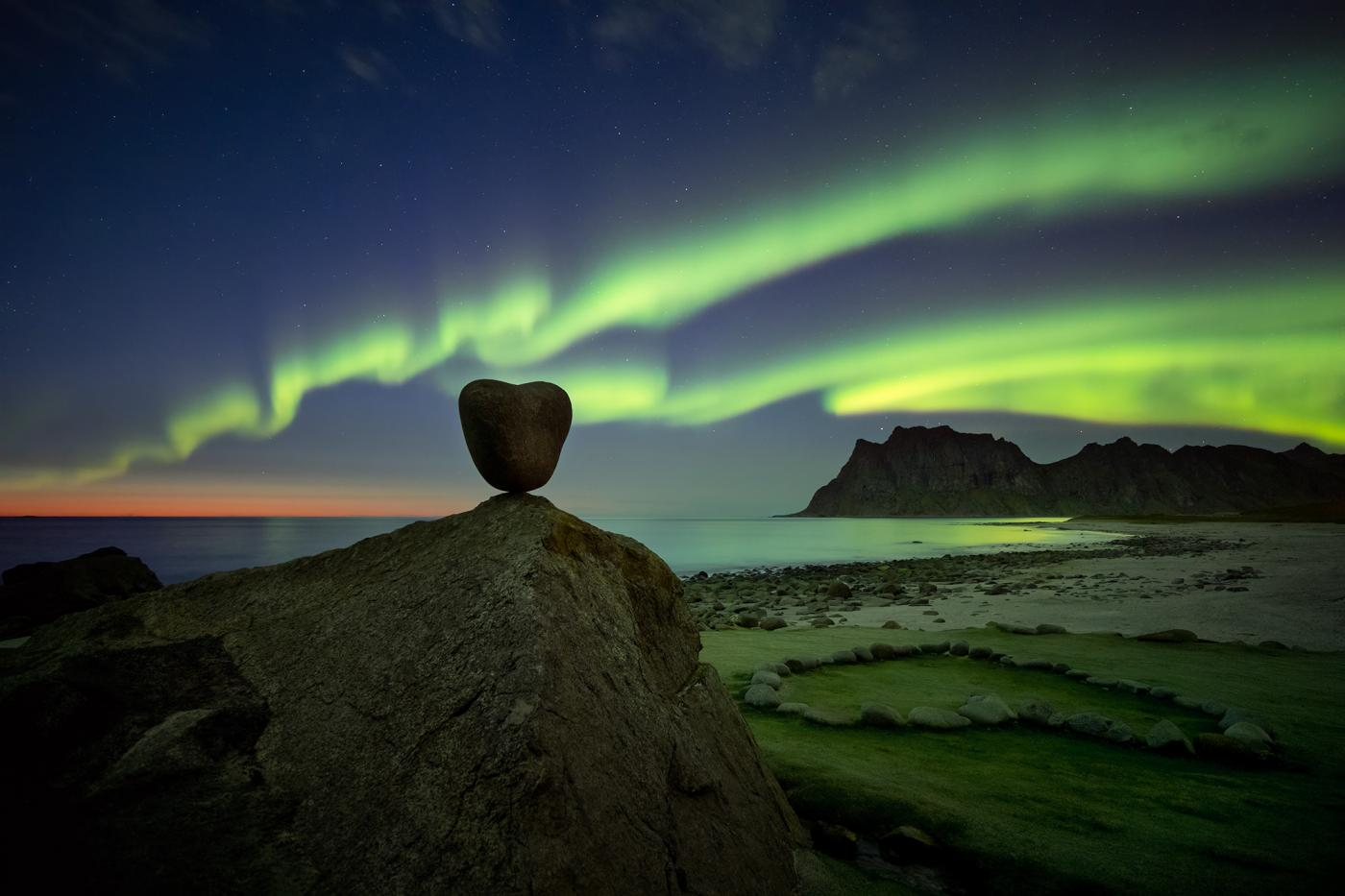 An image showing 'Arctic Love'