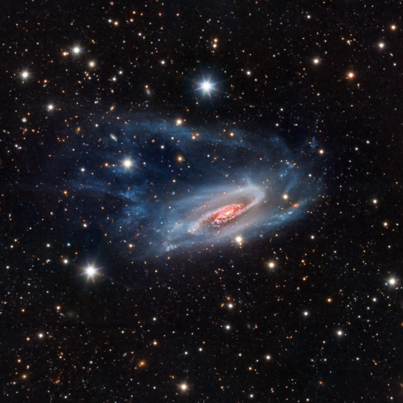 An image showing 'NGC 3981'