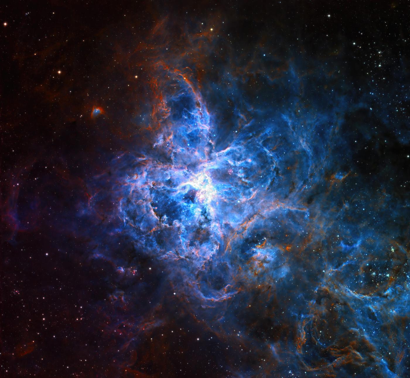 An image showing 'Tarantula Nebula '