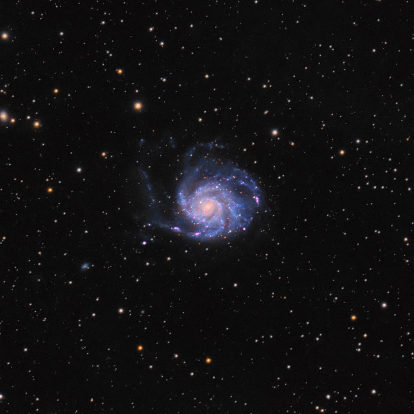 An image showing 'M101 —The Pinwheel Galaxy'
