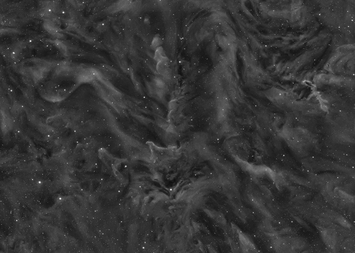 SN-15027-1_Dust Clouds in Orion © Tristan Campbell.jpg