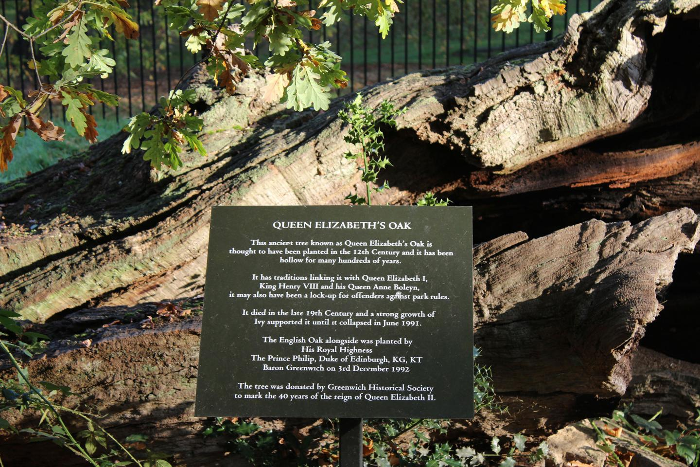 Queen Elizabeth's Oak - sign