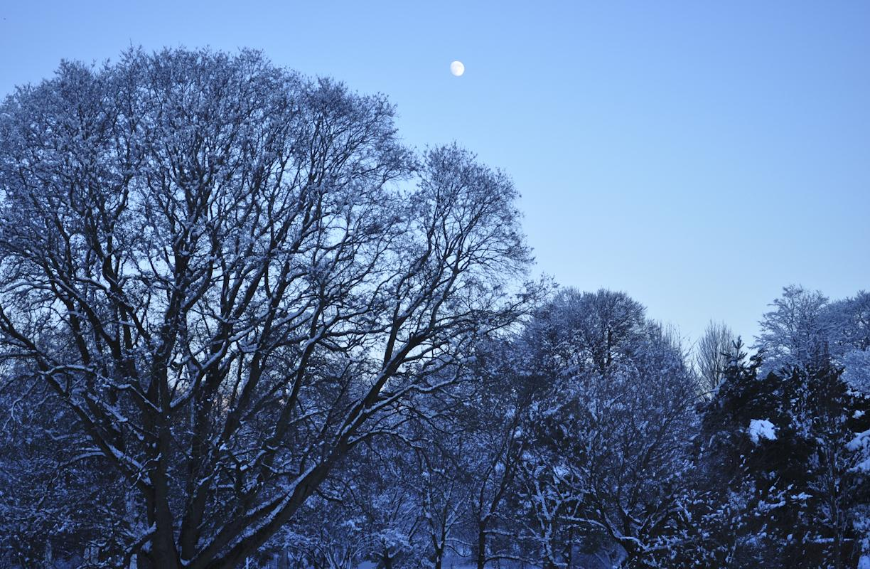 Winter's Moon © Jessica Caterson, Astronomy Photographer of the Year Young Commended 2011