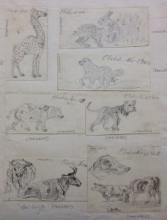 Sheet of sketches of animals, by Edward William Cooke (aged 7), 1817, National Maritime Museum, PAE6546 to 6552