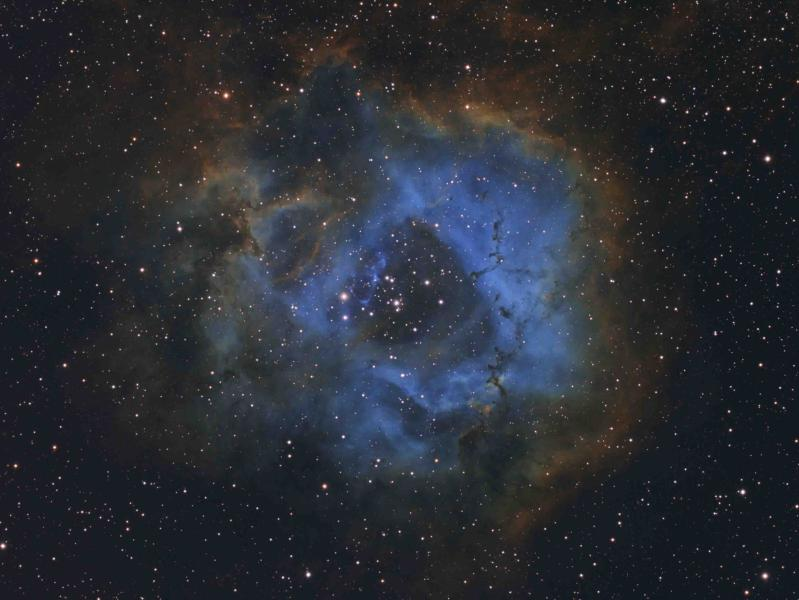 Stellar Flower © Davy van der Hoeven | Insight Investment Astronomy Photographer of the Year 2019.jpg